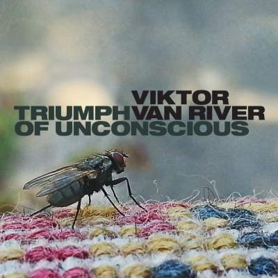 "Cover of ""Triumph Of Unconscious"" by Viktor Van River"