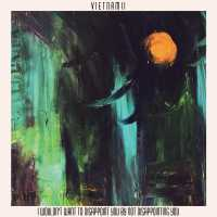 "Cover of ""I Wouldn't Want To Disappoint You By Not Disappointing You"" by Vietnam II"